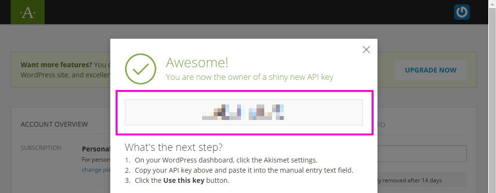 Akismet のパスコードが発行された画面